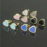 Bijoux en acier inoxydable Mode bijoux Earrings (HDX1108)