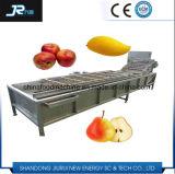 Brosse lave-glace commerciale de légumes de la technologie