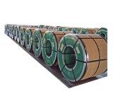 De koudgewalste Rol van het Roestvrij staal SS304 SS316
