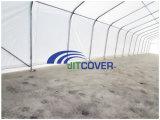 30 ' يوسع معياريّة زراعة تخزين خيمة, بناء وفولاذ يهندس بنية منزل ([جيت-3085ز])