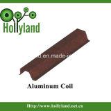 Обыкновенная толком алюминиевая катушка (ACL)