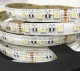 4 em 1 DC12V DC24V PI65, PI67, PI68 LED RGBW Strip para KTV Contador Barra Showcase Decaration Entretenimento Carta de sinalização