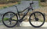 """29 """" [هيغقوليتي] كهربائيّة درّاجة درّاجة مع يخفى [بتّر/] [إ] [موونتين بيك] ([س-2902])"""