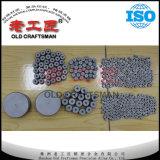 Stampi di piega del carburo cementato del tungsteno di lunga vita per metallurgia di potere