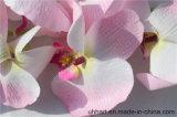 2017 neigende Prouct Qualitäts-Orchidee-Blumen-Kunstseide blüht Motten-Orchidee