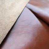 [برثبل] [ميكروفيبر] جلد لأنّ أحذية فرعة حذاء وأحذية يصفّ [هو-583]