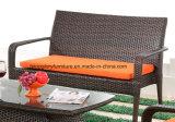 PE Rattan e móveis de alumínio para sofá exterior (TG-1300)