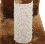 사이살 삼 고양이 나무 Scratcher 자연적인 포스트 (KG0063)