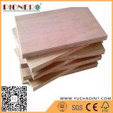Para el embalaje de madera contrachapada comercial con núcleo de álamo