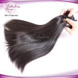 Weave reto do cabelo humano das mulheres malaias do cabelo 8A