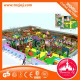 Cour de jeu d'intérieur d'enfants commerciaux vilains de château