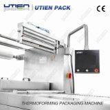Automática pollo Termoformado Máquina de vacío Embalaje / Termoformadora (DZL)