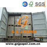 De bonne qualité offset de taille standard 80GSM dans la feuille de papier