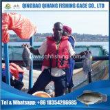 浮かぶ正方形の魚のケージ栽培漁業