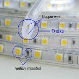 5050 120V 6000k imperméabilisent la lumière de bande extérieure de DEL