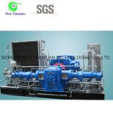 1000-1760nm3/H de grote Compressor van het Aardgas van de Capaciteit van het Volume