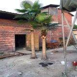 直接工場販売の人工的なヤシの木