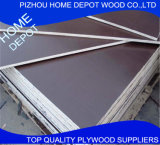 Contreplaqué façonné en bois dur de 18 mm Fabriqué en bois dur avec colle parfaite