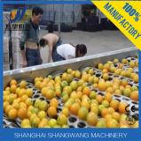 오렌지 주스 채우는 장비 선 또는 오렌지 주스 생산 라인