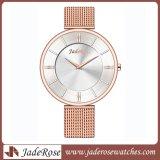 Neue Art-bunte Dame-Edelstahl-Quarz-Armbanduhren