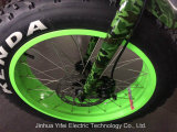 20 polegadas que dobram a bicicleta elétrica gorda Emtb com bateria do Lítio-Íon