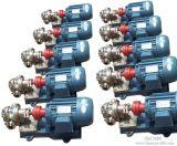 Pompe Hydraulique à double engrenage pour réacteur chimique