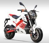 2017 تصميم جديدة [1500و] [2000و] [3000و] يتسابق بالغة درّاجة ناريّة كهربائيّة (كوجر جديدة)