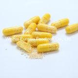 La vitamina C e lo zinco Sostenere-Rilasciano le capsule