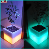 "Cube LED rechargeable 16"" W/changement de couleur Open Cube à distance"