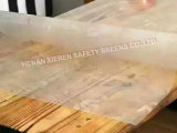 명확한 테이블 PVC 장