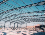 Professionista in Standard Steel Structure Building per Workshop Warehouse Plants Villa