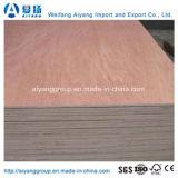 1220*2440*18mm Bintangor para muebles de madera contrachapada comercial