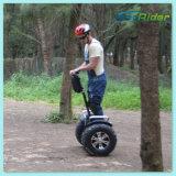 2개의 바퀴 서 있는 2륜 전차 각자 균형 전기 소형 스쿠터