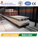 Печь тоннеля кирпича глины в заводе кирпича глины