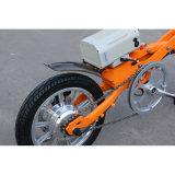 14 motor eléctrico sin cepillo del eje de la C.C. de la pulgada 36V 250W para la bici eléctrica