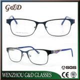 Espectáculo de acero inoxidable de alta calidad Marco óptica gafas Gafas