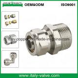 ISO9001 Certified Brass Female Straight Fitting / Pex Fitting (AV9052)