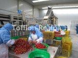 Completare la linea di produzione del succo di frutta