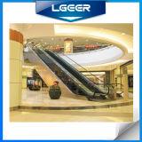Rolltreppe mit Indoor Type