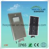 Todo en uno integrado 12W Luz solar calle con la pole