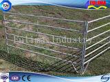 Pre гальванизированные панели скотин для оборудования поголовья (FLM-CP-004)