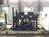 Gea unité parallèle de piston à basse température compresseur de réfrigération