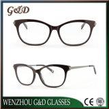 Le azione del commercio all'ingrosso di disegno di modo rendono ad acetato di ordine Eyewear ottico