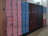 Armario fenólico sólido del estadio de Fitnessroom de la gimnasia