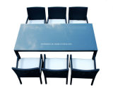 Mobília de vime ao ar livre/mobília de vime/mobília do jantar ajustada (SC-B6023)