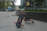 Смещение моторизованное колесами Trike света 3 СИД для сбывания для детей