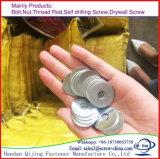 DIN 6796 de Vlakke Wasmachines van het Roestvrij staal