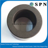Cylindre Permanent Ferrite Magnet Multipole Rings
