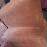 Madera contrachapada del anuncio publicitario de la madera contrachapada de la chapa de la cara de Bintangor/Okoume