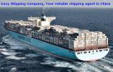 20FT 40FTの輸送箱サービス一般貨物の船を強化しなさい